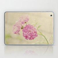 Vintage Pink Ruffled Roses Laptop & iPad Skin