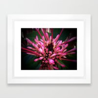 Morning in winter Framed Art Print
