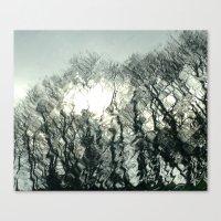 Sunny Raindrops Canvas Print