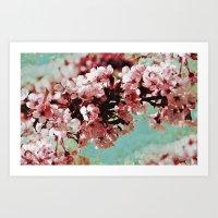 Springblossom - Photogra… Art Print