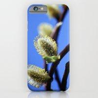 Willow Catkins iPhone 6 Slim Case