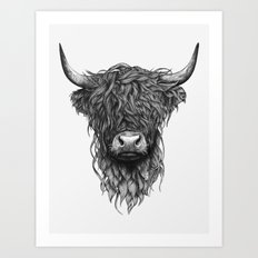 Highland Cattle Art Print