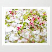 Spring Confetti Blossoms Art Print