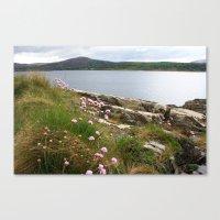 Dingle Peninsula, Ireland  Canvas Print
