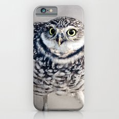 Burrowing Owl Slim Case iPhone 6s