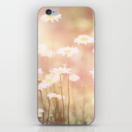 Hazy Summer Daisy  iPhone & iPod Skin
