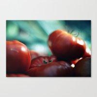 Pomodori Canvas Print
