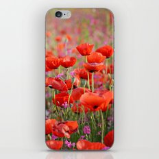 Poppies in Spring iPhone & iPod Skin