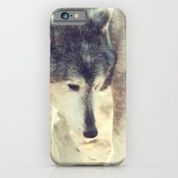 iPhone & iPod Case featuring Wolfs Beauty by Karol Livote