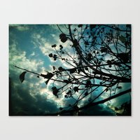 Buds And Branches Canvas Print