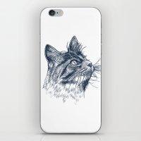 Cat Portrait iPhone & iPod Skin