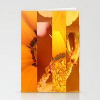 Crash_ 21 Stationery Cards
