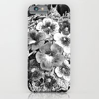 iPhone & iPod Case featuring Redhorse Black by Shane Deruise Photography
