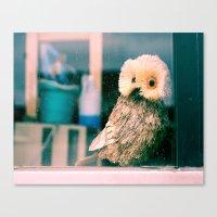 Lomo Owl Canvas Print