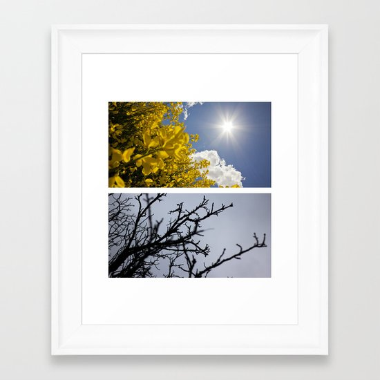 Life Cycle. Framed Art Print