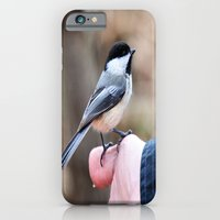iPhone & iPod Case featuring lets feed the birds by kmsalvatore
