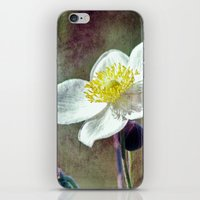 ...the Seeds That You Pl… iPhone & iPod Skin
