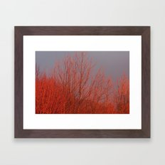 Red Autumn Framed Art Print