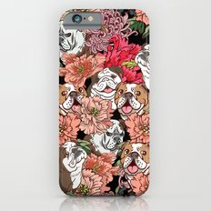 Because English Bulldog iPhone 6 Slim Case