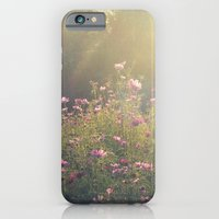 iPhone & iPod Case featuring Cosmos in the Late Day Sun by V. Sanderson / Chickens in the Trees