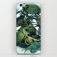 In the crab basket iPhone & iPod Skin