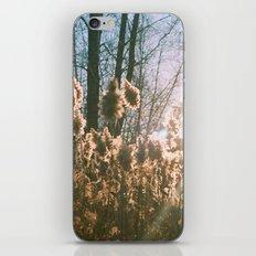 storm king iPhone & iPod Skin
