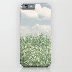 sugar cane field 2 iPhone 6 Slim Case