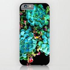 Beautiful Autumn plant green, blue iPhone 6 Slim Case