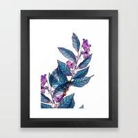 Botanical Study Of A Cof… Framed Art Print