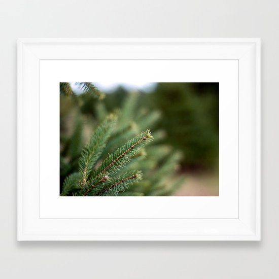 Needles II Framed Art Print