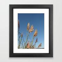 California Sky Framed Art Print