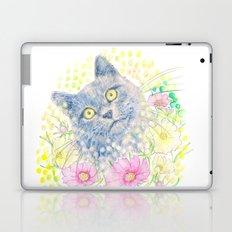 Dreamy Chartreux Cat Laptop & iPad Skin