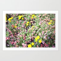 pink and yellow flowers Art Print