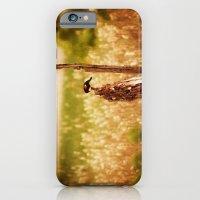 Bird Photography iPhone 6 Slim Case