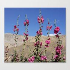 Himalayan Blossoms Canvas Print