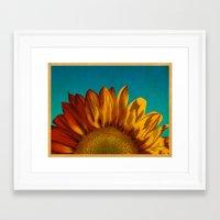 A Sunflower Framed Art Print