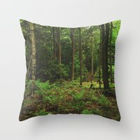 Pathfinder II Throw Pillow
