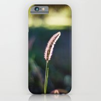 iPhone & iPod Case featuring Autumn Grass II by Katie Kirkland Photography