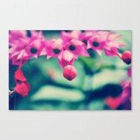 Sweet Flower Canvas Print