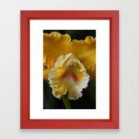 frilly yellow Framed Art Print