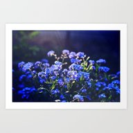 Forget-me-not-flower Art Print