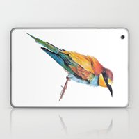 Bee-eater Laptop & iPad Skin