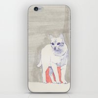 Cat 01 iPhone & iPod Skin