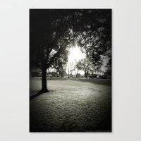 Daydream Believer Canvas Print
