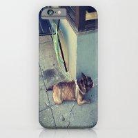 Dog Days Of Summer iPhone 6 Slim Case