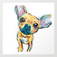 Chihuahua Face Art Print