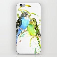 Parakeets iPhone & iPod Skin