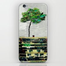 the story of green trees iPhone & iPod Skin