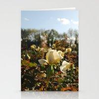 Rose Garden Sunshine Stationery Cards