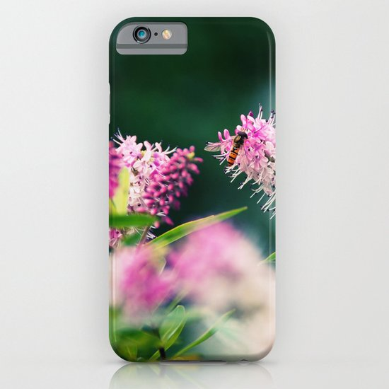 Summer Delight iPhone & iPod Case